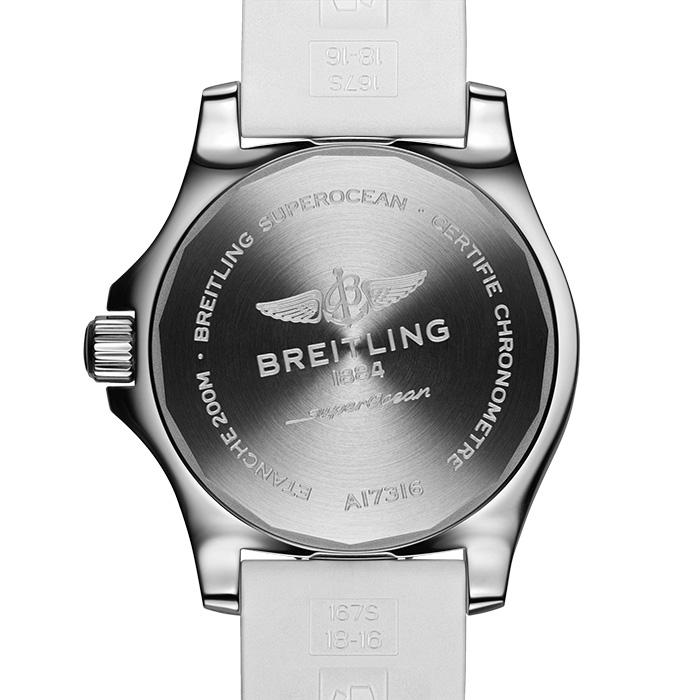 Saffier-producten-horloge-700x700_0024_a17316d21a1s1-3